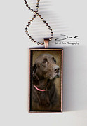 Mammals Jewelry Framed Prints - Senior Chocolate Lab Handcrafted Necklace Framed Print by Jak of Arts Photography