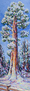 Sequoia Paintings - Sentinal Tree in Snow by Joy Collier