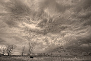 Stormy Skies Acrylic Prints - Sepia Angry Skies Acrylic Print by James Bo Insogna
