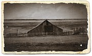 Old Barns Mixed Media Posters - Sepia Eastern Oregon Barn 2 Poster by Chalet Roome-Rigdon