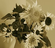 Soft And Subtle Framed Prints - Sepia Garden Sunflower Bouquet Framed Print by Mary Wolf