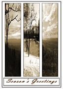 Carolyn Stagger Cokley Acrylic Prints - Sepia  Season Acrylic Print by Carolyn Stagger Cokley