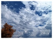 September Afternoon Print by Glenn McCarthy Art and Photography