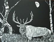 Elk Drawings - September Sounds by Carol Matz