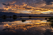 Eastern Sierra Prints - September Sunset Reflected Print by Cat Connor