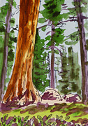 Sketchbook Painting Prints - Sequoia Park - California Sketchbook Project  Print by Irina Sztukowski
