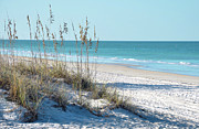 Blue Sky And Sand Posters - Serene Florida Beach Scene Poster by Rebecca Brittain