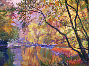 Serene Landscape Painting Originals - Serene Reflections by David Lloyd Glover