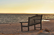 Clean Ocean Framed Prints - Serenity Bench by the Beach Framed Print by Adspice Studios