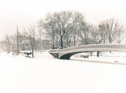 Winter Trees Photos - Serenity - Bow Bridge in the Snow - Central Park by Vivienne Gucwa
