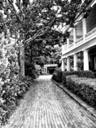 Charleston Houses Prints - SERENITY Charleston SC Print by William Dey