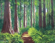 Sequoia Paintings - Serenity Forest by Bev Conover