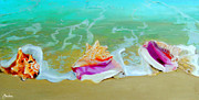 Shells Paintings - Serenity by Maritza Tynes