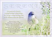 Birds Digital Art Acrylic Prints - Serenity Prayer Acrylic Print by Holly Kempe