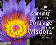 Get Well Posters - Serenity Prayer With Lotus Flower By Sharon Cummings Poster by Sharon Cummings