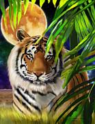 Thomas J Herring - Two Big Cat Series Tiger