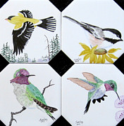 Sandra Maddox - Set of Coasters