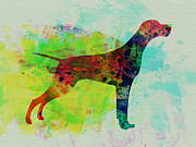 Setter Pointer Art Posters - Setter Pointer Watercolor Poster by Irina  March