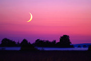 Man-in-the-moon Prints - Setting Crescent Moon At Dusk Print by Douglas Taylor