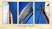 Schooners Art - Setting Sail Triptych by ABeautifulSky  Photography