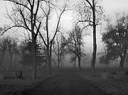 Gothicolors Donna Snyder - Settling Fog