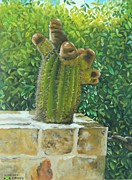 Kenneth Harris - Seven Head Cactus