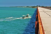 Florida Bridges Digital Art Prints - Seven Mile Bridge Print by Angelina  Forcine