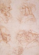 Faces Drawings Framed Prints - Seven Studies of Grotesque Faces Framed Print by Leonardo da Vinci