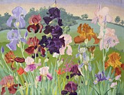 Pretty Orchid Prints - Several Inventions Print by Sir Cedric Morris