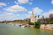 Watchtower Photos - Seville River View by Artur Bogacki