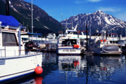 Boats In Harbor Prints - Seward Alaska Print by Thomas R Fletcher