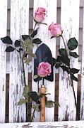 Decor Photography Prints - Shabby Chic Cottage Romantic Pink Roses Garden Tools Fine Art  Print by Kathy Fornal