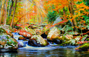 Beautiful Creek Posters - Shades of Autumn Poster by Darren Fisher