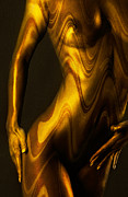 Fine Art Nude Posters - Shades of Caramel Poster by David  Naman
