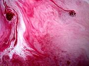Shades Of Pink Print by Salman Ravish