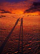 Shadow  Print by Gray  Artus