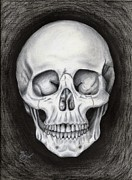 Human Skeleton Drawings - Shadow of Doubt by Hannah Parker