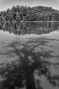 All - Shadow on lake by Hitendra SINKAR