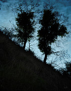 Silhouette Digital Art - Shadowlands 8 by Bedros Awak