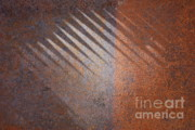 Art For Men Prints - Shadows and Rust Print by Carol Groenen