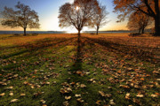 Rural Landscapes Photos - Shadows by Bill  Wakeley
