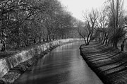 Blackandwhite Photo Posters - Shadows on river bank Poster by Peter Kallai