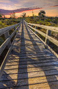 Park Dock Prints - Shadows on the Boardwalk Print by Debra and Dave Vanderlaan