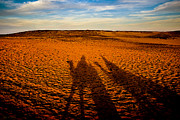 Camel Photo Metal Prints - Shadows on the Sahara Metal Print by Mark E Tisdale