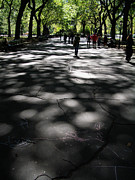 """shadow Trees"" Posters - Shadowy Path in Central Park Poster by Cynthia Lagoudakis"