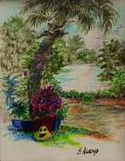 Florida Flowers Drawings - Shannons  Garden by Beth Arroyo