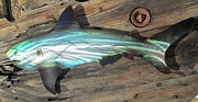 Saltwater Sculpture Posters - Shark abstract metal wall art Poster by Robert Blackwell