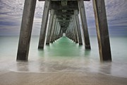 Englewood Framed Prints - Sharkies Pier Framed Print by Regina  Williams