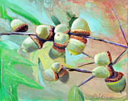 Randy Bell - Sharonwoods Acorns