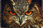 Great Horned Owl Framed Prints - Sharpie Owl Framed Print by Ayse T Werner